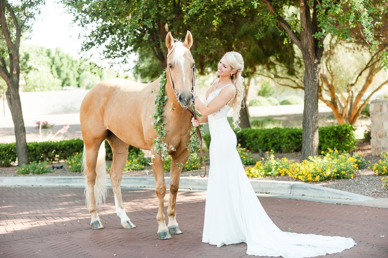 802483ff8e Wedding dress train v neck bride with horse portrait chestnut with greenery  around neck white mane