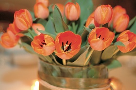 Floral centerpiece made of tulip flowers