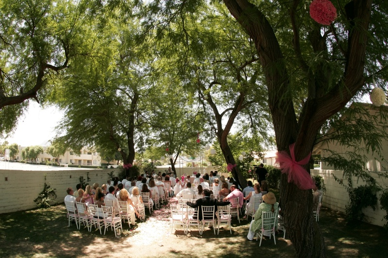 Trees wrapped with tulle and white chairs