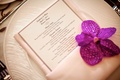 Light pink napkins topped with fuchsia orchid