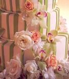 Celadon vertical stripes on round cake