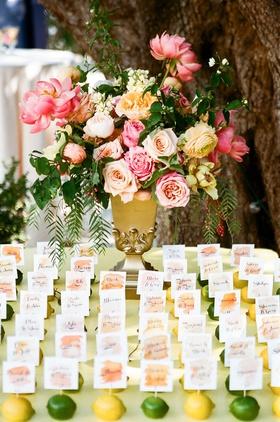 wedding reception spring wedding outdoors yellow lemon green lime watercolor escort cards flowers