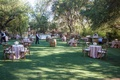 Malibu cocktail hour with pink linens vineyard wood chairs wine barrel tables lawn