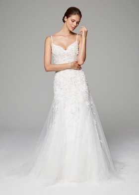 Anne Barge Fall 2018 bridal collection tulle lace fit and flare ball gown with beading