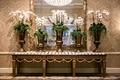 wedding reception escort card table damask wallpaper gold console table orchid in urns luxury hotel