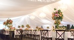 reception tent with white drapery and chandeliers, dark wooden chairs, bright centerpieces