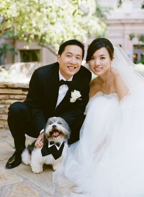 bride and groom pose with small gray and white dog