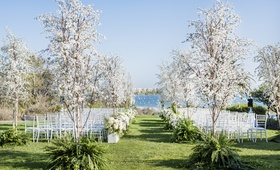 santa barbara wedding ocean view ceremony, white flowers trees in ferns