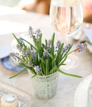Fresh lavender plant in vase
