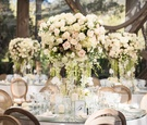 cream garden rose centerpieces with dripping greenery mirror table top rustic chairs