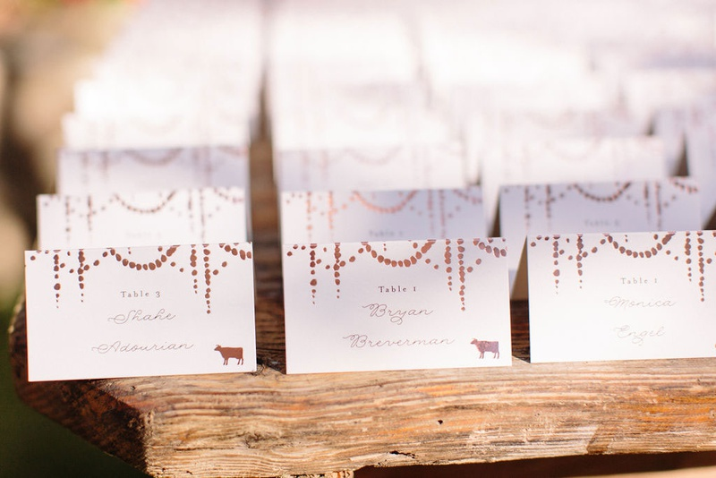 Minted wedding escort cards with confetti circle motif animal stamps for entree table numbers wood