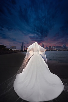 Bride in a strapless Pnina Tornai dress with cathedral train, Peter Langner veil, Chicago Lakefront