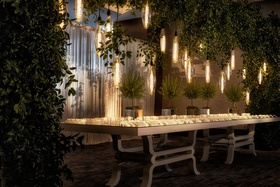 wedding escort card table cocktail hour edison bulb lights trees greenery custom table design