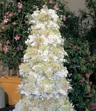 Wedding confection covered in flowers