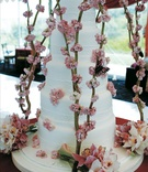 Five layer cake with pink flowers and butterfly designs