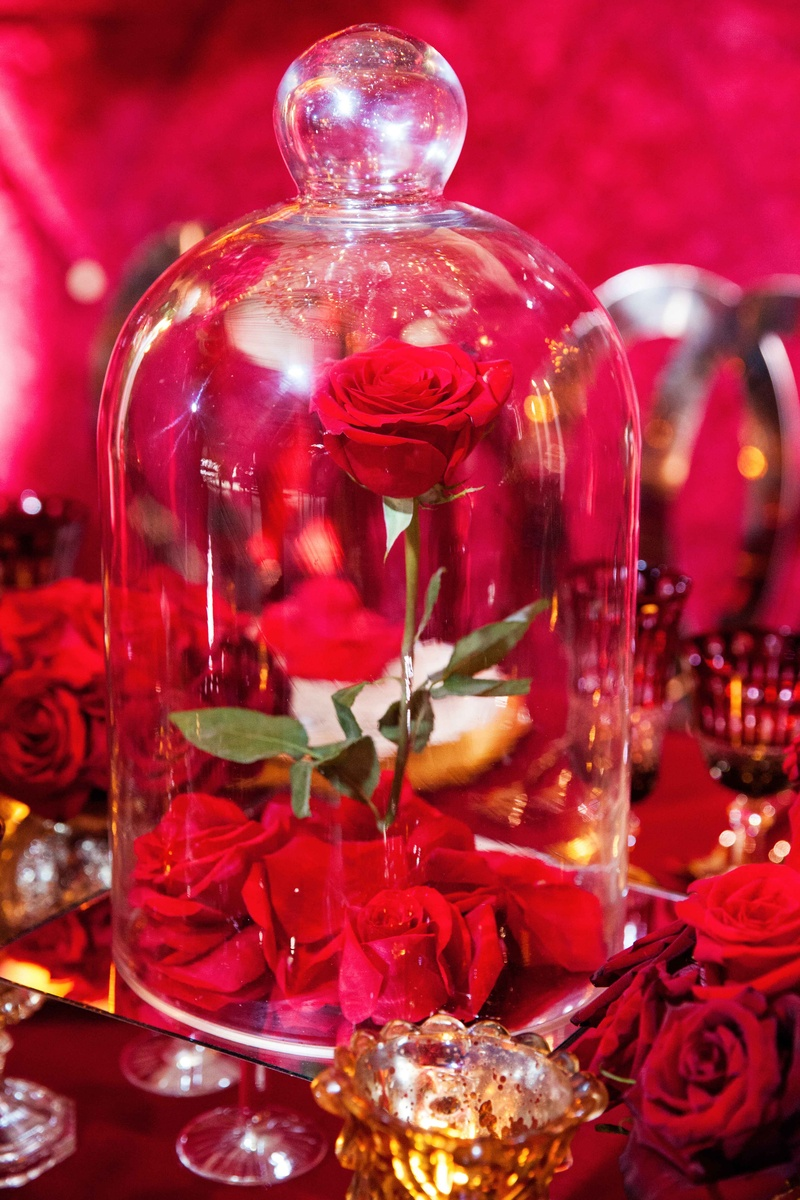 Dramatic red shoot inspired by disneys beauty and the beast enchanted rose from beauty and the beast for styled wedding shoot izmirmasajfo