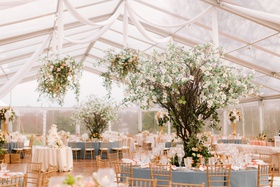 wedding reception clear top tent dogwood trees flower chandeliers peach pink blue gold color palette