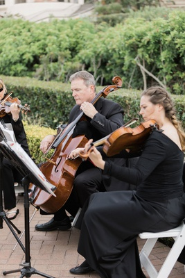 wedding ceremony musicians string quartet viola violin cello trio black ensembles