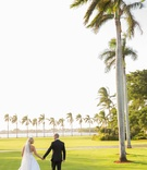 Wedding portrait couple bride and groom tuxedo veil tall palm trees