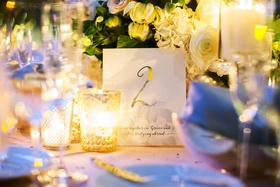 Wedding reception personalized table number metallic with fact about couple 2 travel two wedding