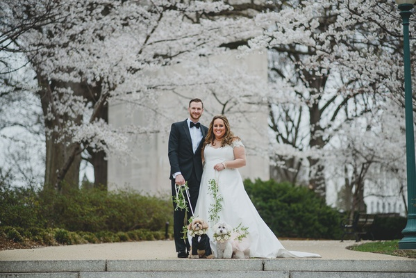 bride and groom with washington dc cherry blossom trees and two cute dogs in outfits flower collar