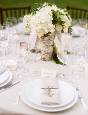 Neutral wedding reception table with tree trunk birch wrap centerpiece white hydrangea tan napkin