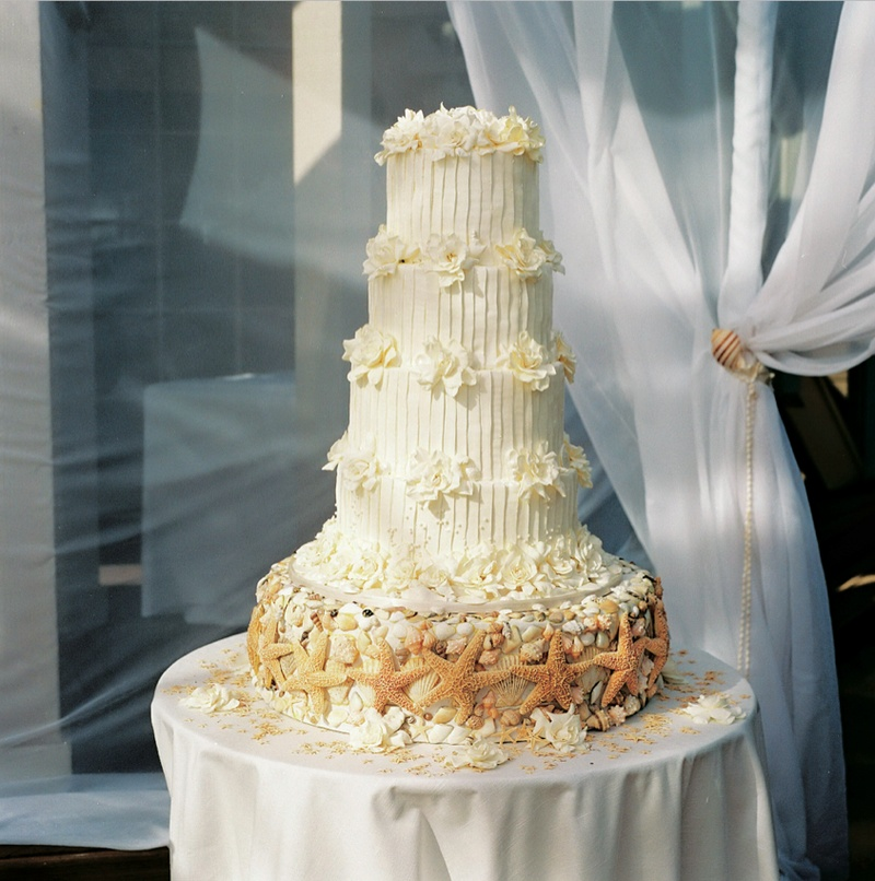 sea shell wedding cakes cakes amp desserts photos wedding cake inside weddings 19712