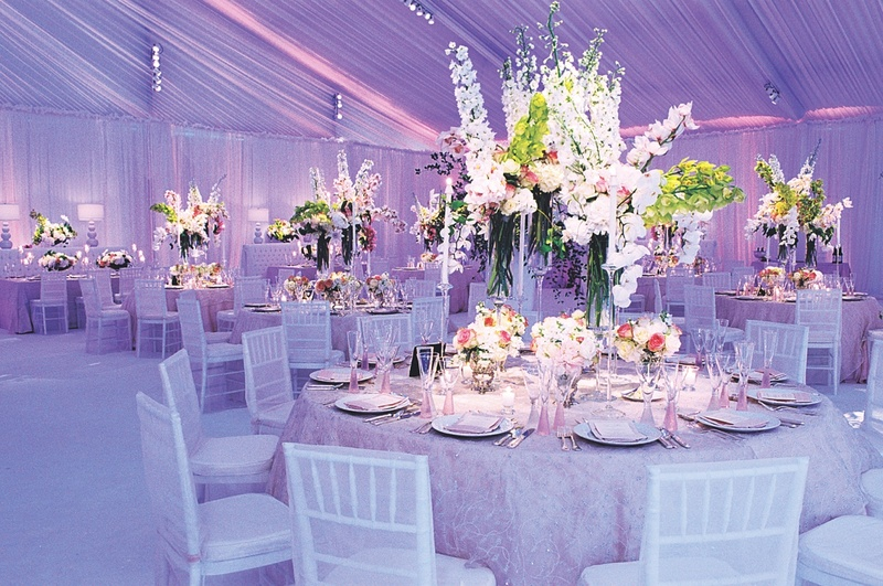 Reception D 233 Cor Photos Lavender Reception Tent Lighting