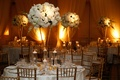 Wedding reception with tall centerpiece of white hydrangeas, roses, orchids, gold chiavari chairs