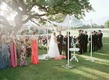 Bride and groom under chuppah and Ojai oak tree