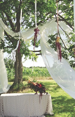 Elm tree decorated with drapery and flowers
