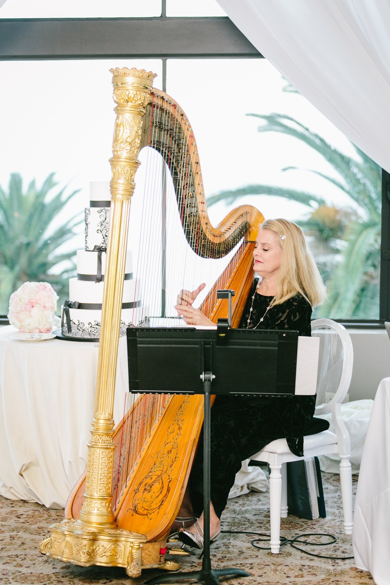 harpist performs at wedding, live music at wedding, harpist at cocktail hour