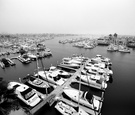 Black and white photo of docked boats