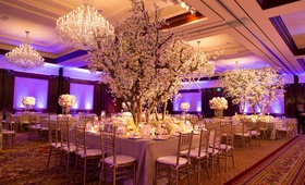 Wedding reception with plum uplighting, cherry blossom trees with white flowers, gold tablecloths