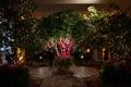 trees for reception, enchanted garden theme indoor wedding reception