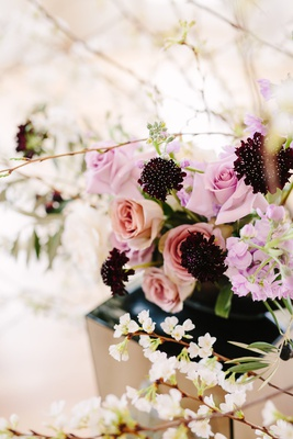 scabiosa black knight flower accenting lavender and blush floral arrangements with quince flowers