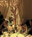 Manzanita branches and coral centerpiece