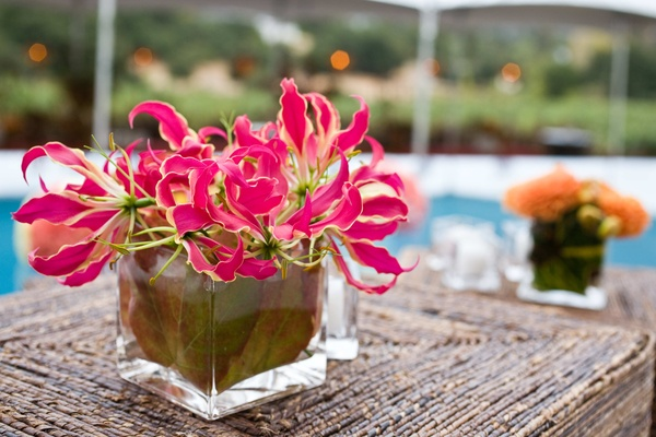 hot pink flowers in square glass vase
