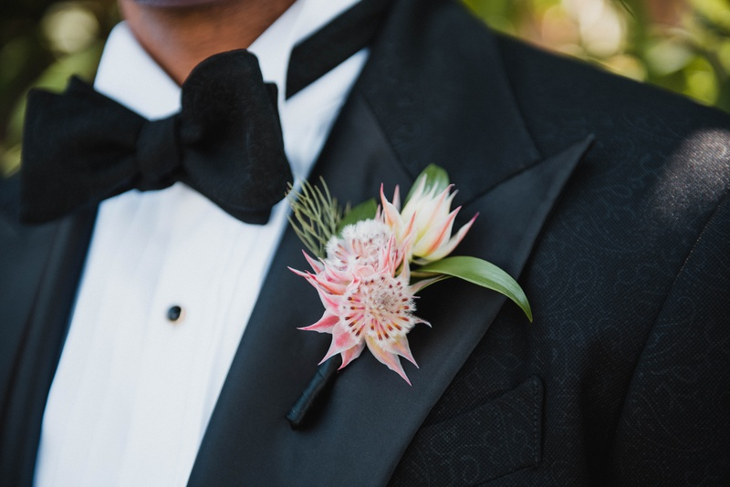 groom boutonniere made with three blushing bride protea blossoms