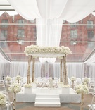 Birch tree chuppah under clear ceiling panels