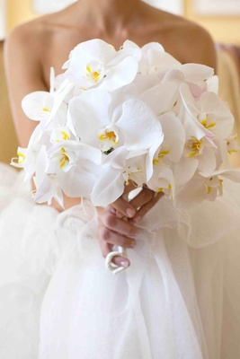 Bride holding single-variety white orchids