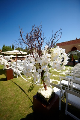 Tree branch flower arrangement with orchids at alfresco wedding