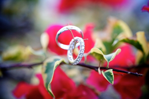 silver rings diamond band on a small branch twig with flowers in the background