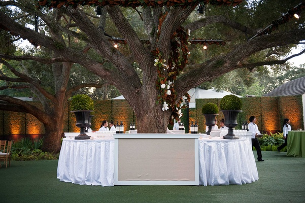 At home wedding cocktail hour with bar circled around tree on lawn