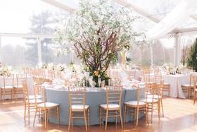 dogwood tree wedding centerpiece blue linen gold chairs clear top tent greenhouse design