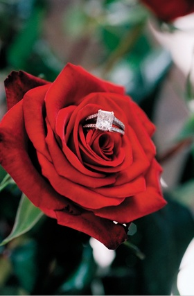 Engagement ring with pave diamonds on red rose