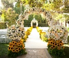 Cream and peach roses and sunflowers along aisle