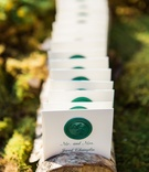 Wood branch with slices for escort cards green wax seal monogram of couple green script