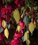 garden-themed reception, escort card tree names and place cards on leaves