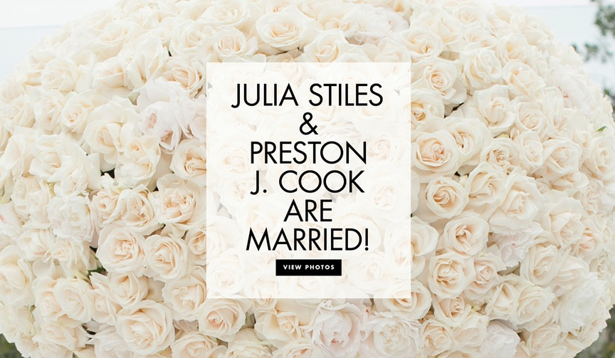Julia Stiles and Preston J Cook are married see more photos and learn